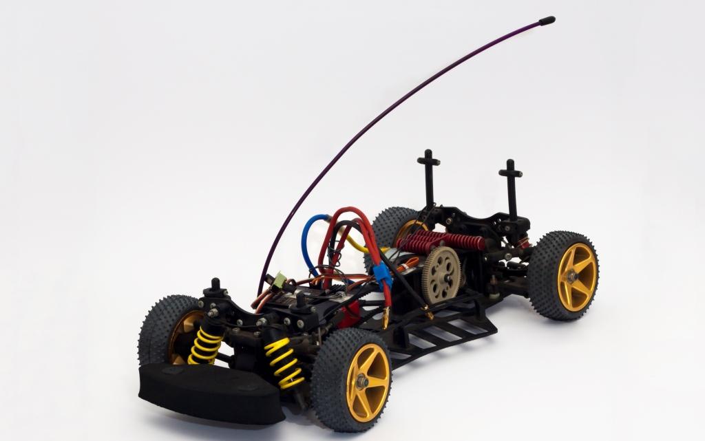 skeleton RC car